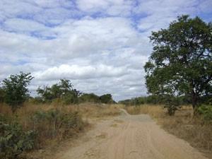 2008.ザンビア 139
